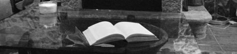 foto reducida recorte libro1 gris